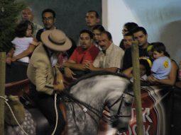 Lusitano paard - Fatacil - Algarve